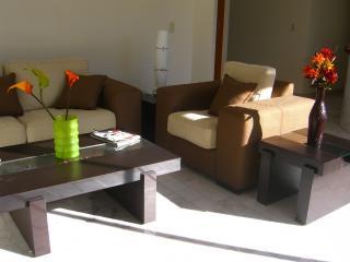 Beautiful Condo with Internet Access and Washing Machine - Guadalajara vacation rentals