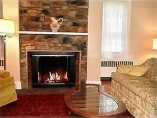 Beautiful Restored 1800's Farmhouse/Mts./Streams - Bearsville vacation rentals