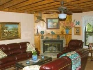 Eagles' Nest 2300 SF Texas Hill Country Vac Home - Dripping Springs vacation rentals