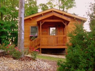 Romantic Cabin with Deck and A/C - Hillsboro vacation rentals
