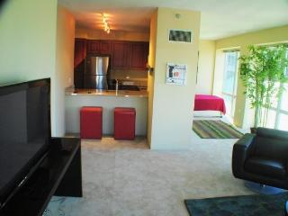 Chicago Loop Residences - Chicago vacation rentals