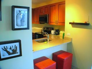 Perfect 1 bedroom Vacation Rental in Chicago - Chicago vacation rentals