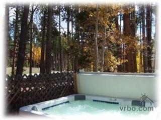 Beautiful Breckenridge Vacation Home- Convenient! - Breckenridge vacation rentals
