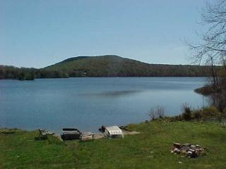 Vermont Lakefront Paradise Cottage Four Season - Mount Holly vacation rentals