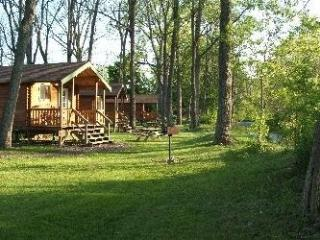 Finger Lakes Log Cabins (Four) near Seneca Lake - Montour Falls vacation rentals
