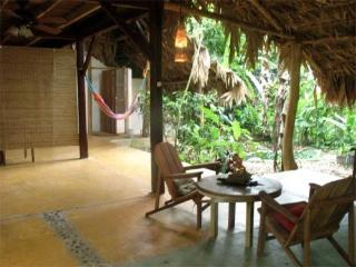 Caribbean Jungle Beach Home - Punta Uva vacation rentals