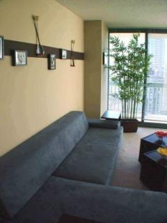 Michigan Ave. BEST LOCATION !!! - Chicago vacation rentals