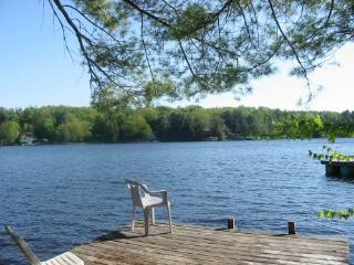 Nice Cottage with Deck and Internet Access - Gloversville vacation rentals