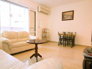 Beautiful And Newly Renovated 2 Bdrm in Talbieh - Jerusalem vacation rentals
