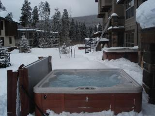 Huge, Luxury Townhome in Town - Hot Tub! - Winter Park vacation rentals