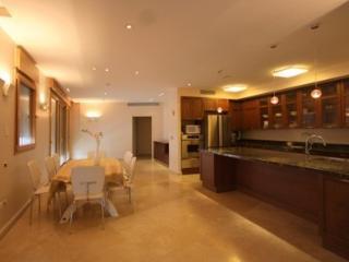 5br Super Luxury Extraordinary Apartment! - Jerusalem vacation rentals