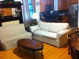 manhattan upper west side new apartment - Manhattan vacation rentals