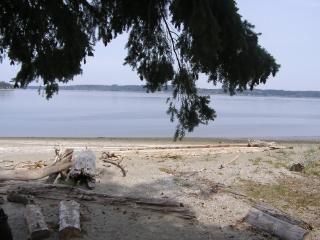 Hartstene Island Vacation Cabin,Pool, Beach, WiFi - Herron Island vacation rentals