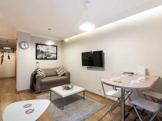 Staylish Cosy flat in Central Location Cihangir - Istanbul vacation rentals