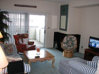 Beautiful House with Deck and Dishwasher - Fenwick Island vacation rentals