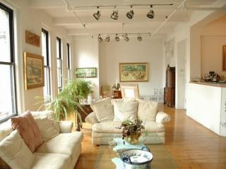 HUGE BEAUTIFUL 3000 SQ FT LOFT SPECIAL RATES - Manhattan vacation rentals