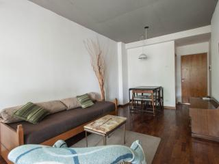 (II)Palermo Hollywood1 BR w/ith Balcony sunny and - Buenos Aires vacation rentals