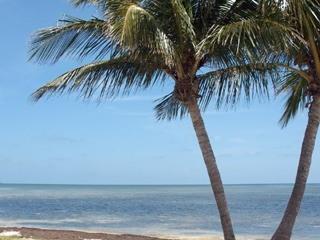 Sunrise Suite Key West 2 Bed Rooms 2 Full Baths - Image 1 - Key West - rentals