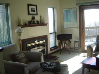Lovely condo in the heart of Wintergreen Resort! - Roseland vacation rentals
