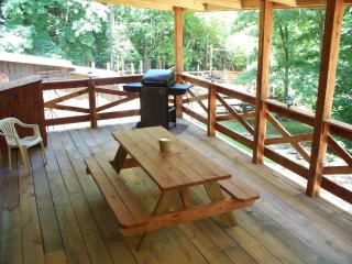 White River Secluded Cabin Free WiFi - Norfork vacation rentals