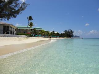 Nice Condo with Internet Access and Dishwasher - George Town vacation rentals