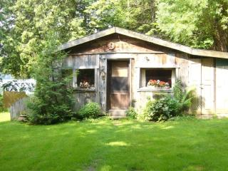 small, cosy and rustic lakefront cabin for rent - East Bolton vacation rentals