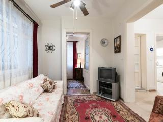 2 bdr apartment near Blue mosque with small garden - Istanbul vacation rentals