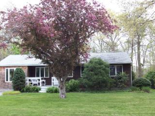 Charming Getaway near Shinnecock Bay - East Quogue vacation rentals