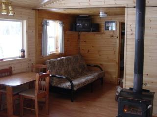 Nice Cottage with Deck and Toaster - New Limerick vacation rentals