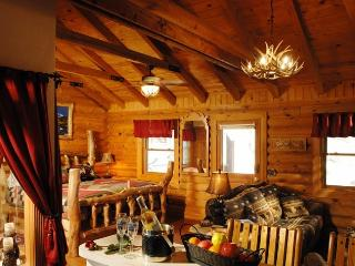 1BR/BA Log Cabin: Perfect Spot for Couples! - Branson vacation rentals