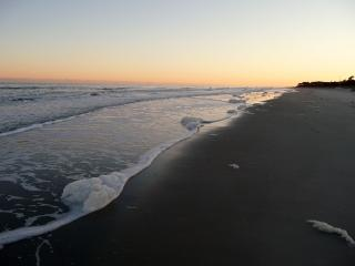 Walk to Semi Private Beach Far From the Crowds - Hilton Head vacation rentals