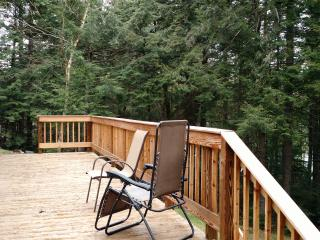Pleasant Pond Waterfront Rental - Island Falls vacation rentals