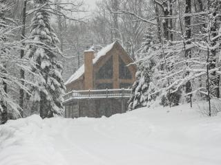 Beautiful Okemo chalet with Hot Tub - Ludlow vacation rentals