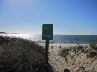 20 steps to the beach - Wellfleet vacation rentals