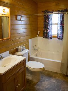 Deluxe Log Home by Seneca Lake at Cobtree - Geneva vacation rentals