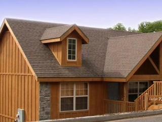 Lakefront Luxury Cabin, Great Fun Fishing, Comfort - Branson vacation rentals