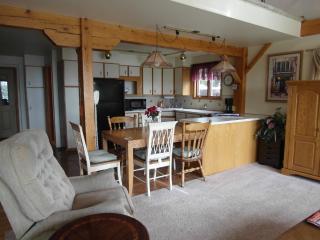 relax in Lake George ,Saratoga , Adirondacks - Diamond Point vacation rentals