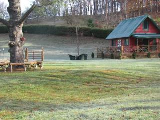 Little River's Guest House - Sugar Grove vacation rentals