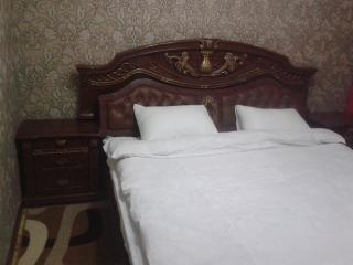 Bright 9 bedroom Guest house in Bishkek - Bishkek vacation rentals