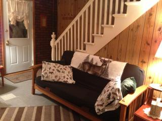 Old Forge Four Seasons Rental Home - Old Forge vacation rentals