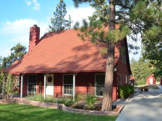 Convenient House with Deck and Internet Access - Big Bear City vacation rentals
