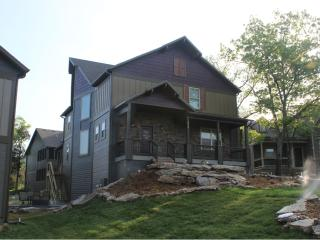 Plum Tree Lodge-7 Bedrooms in Branson Canyon!! - Hollister vacation rentals