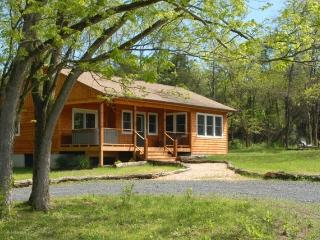 Deluxe 1 BR Riverfront Cabin *Midweek Special* - Rileyville vacation rentals