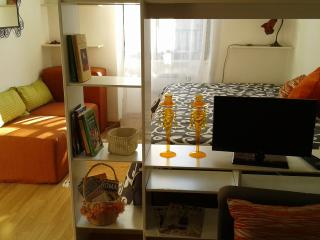 Rome Vatican lovely apartment - Rome vacation rentals