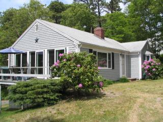 A  Stone's Throw from Follins Pond, Yarmouth Port - Yarmouth Port vacation rentals
