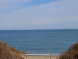 Private sandy beach - Ocean view 4 BR house - Cedarville vacation rentals