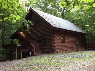 "Log cabin ""Treehouse"" in the Georgia mountains. - Blairsville vacation rentals"