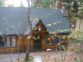 Cozy & Cute Ski & Lake Mountain Cabin - Mi Wuk Village vacation rentals