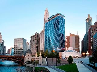 Gorgeous 1 Bedroom Unit In Chicago - Chicago vacation rentals