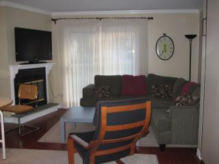 Nice Condo with Dishwasher and Stove - Ellicottville vacation rentals